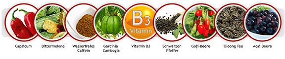 Diätpillen-Inhaltsstoffe