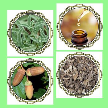 Onycosolve - Pflanzlich, schnell und effektiv gegen Nagelpilz