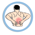 MSM gegen Rückschmerzen